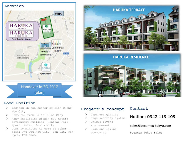 Midori Park Project Overview