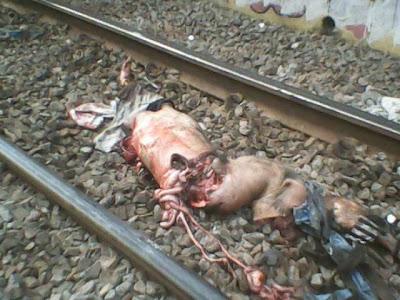 Orignal Trains Accidents