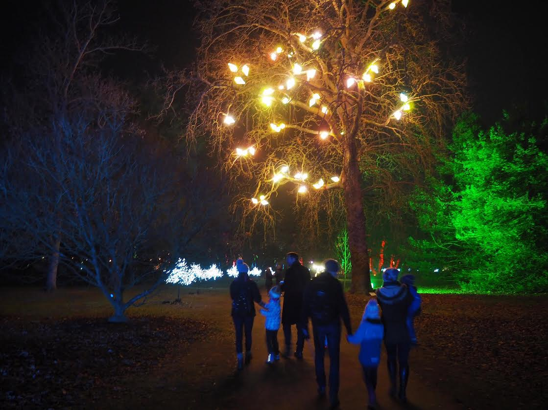 Kew Gardens light walk