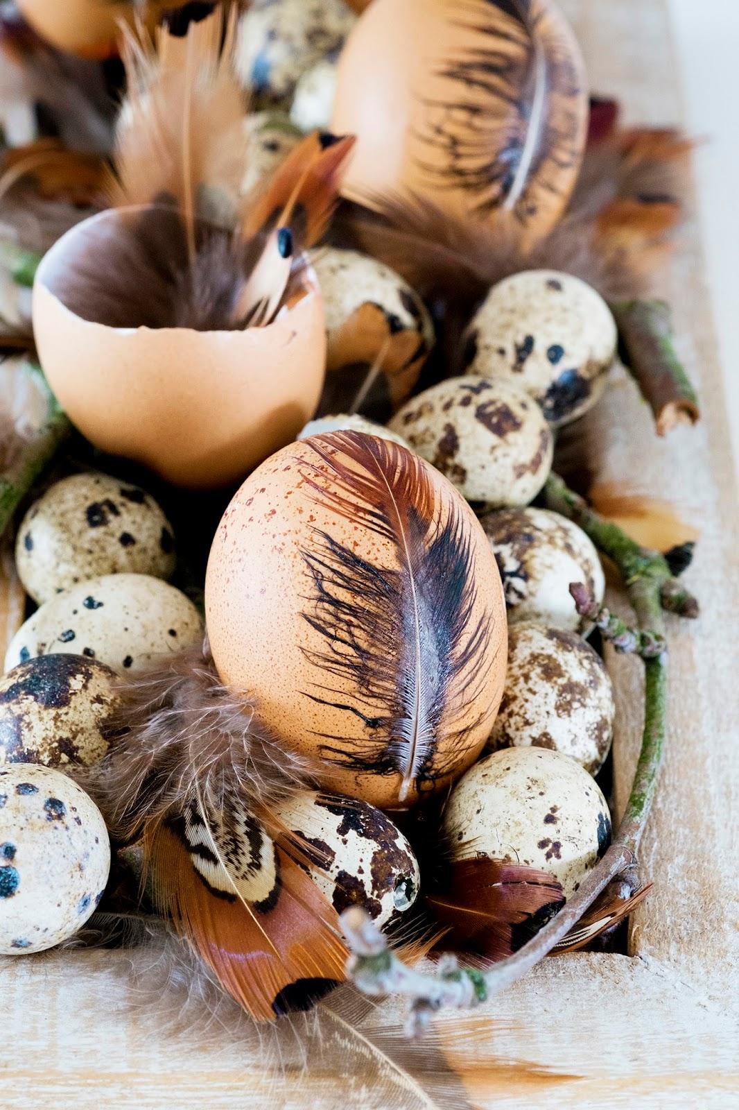 Leuk decoreren met eieren en veren voor Pasen - Paasdecoratie.