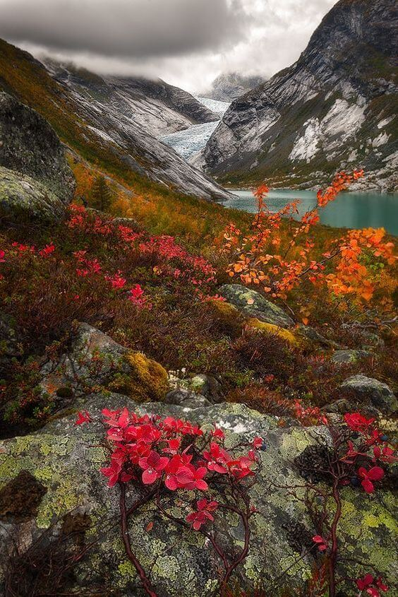 Norway Glacial Autumn