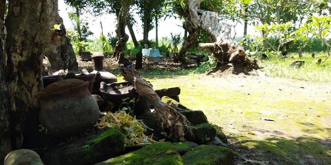 Desa Pulorejo: Kisah Mbah Juminten Hingga Raden Mas Drono