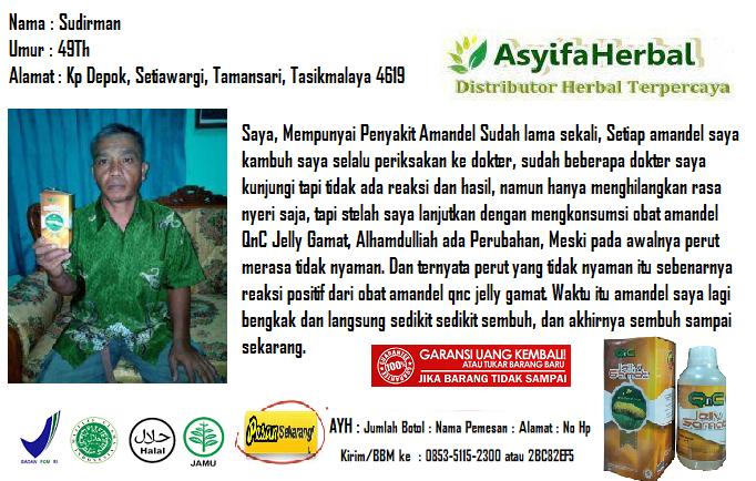 Hasil gambar untuk distributor utama qnc jelly gamat asyifa herbal