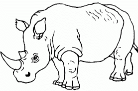 Rhino Coloring Sheet For Kids