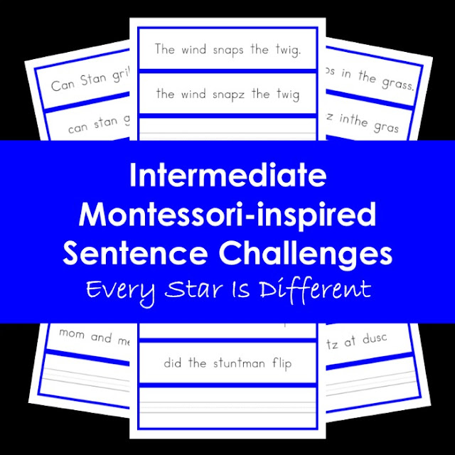 Intermediate Montessori-inspired Sentence Challenges