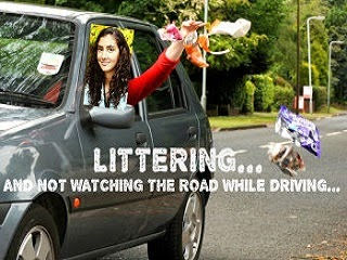 A motorist littering a public highway with trash.