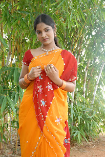 Keerthi Saree Pictures (24)