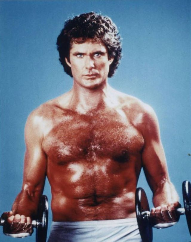 Dont Hassle The Hoff 30 Cheesy Portraits Of David Hasselhoff Like