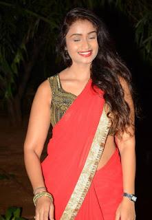 Kiran Chetavani Hot Stills in Saree 15.jpg
