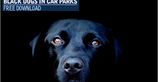 Amateur At Play - Black Dogs In Car Parks (The Different Tune Mix) *FREE DOWNLOAD*