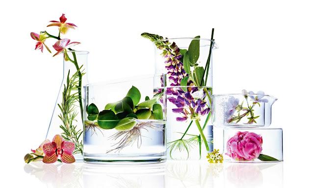 Jak czytać składy kosmetyków i na co zwrócić uwagę w trakcie zakupów