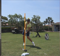 Stacy golf swing