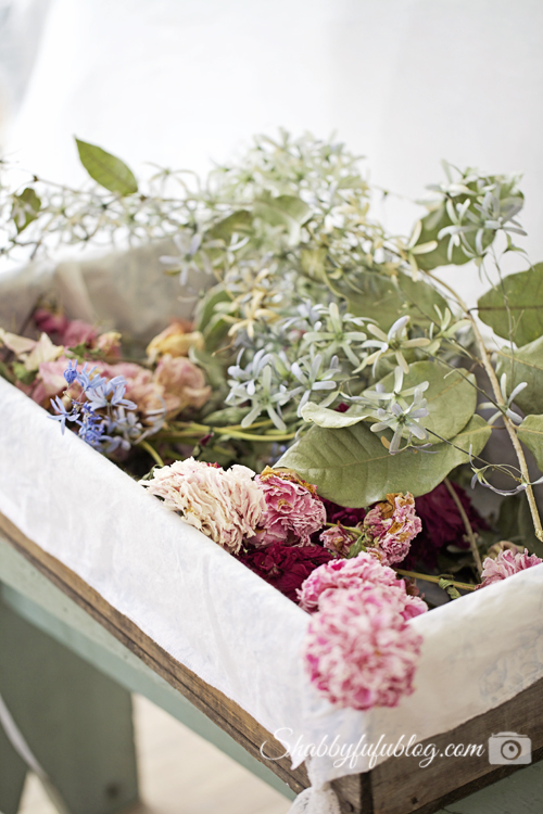drying flowers in a blue berry crate