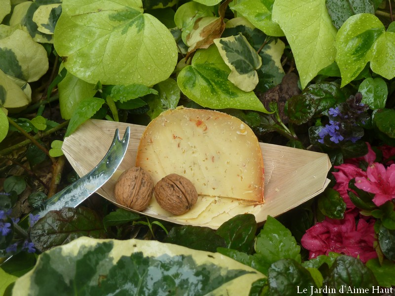 Le jardin d 39 aime haut un plat t t le fromage for Le jardin fromager