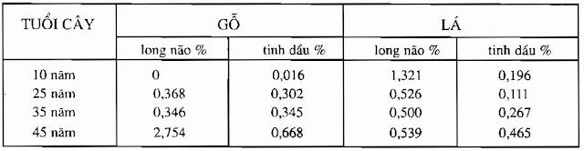 Thành phần Cây Long Não - Cinnamomum camphora - Nguyên liệu làm thuốc Chữa Tê Thấp và Đau Nhức