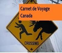 http://leschamotte.blogspot.fr/2012/08/carnet-de-voyage-canada.html