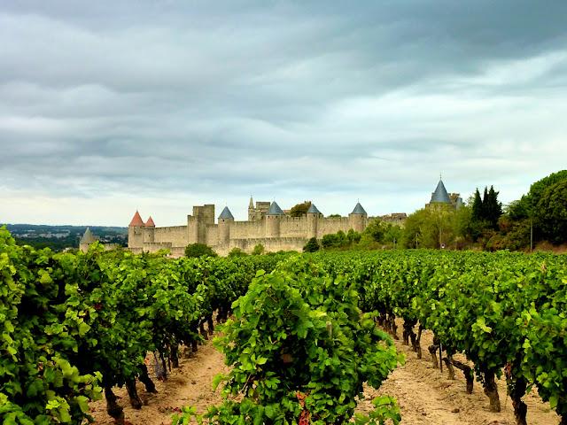 Carcassonne visto de los viñedos