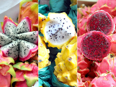 Pitaia - Pitaya - Dragon Fruit - Fruta do dragão - Espécies e variedades