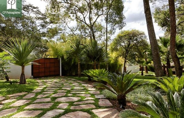 101 planos de casas 7 tips para remodelar tu jard n for Como remodelar un jardin