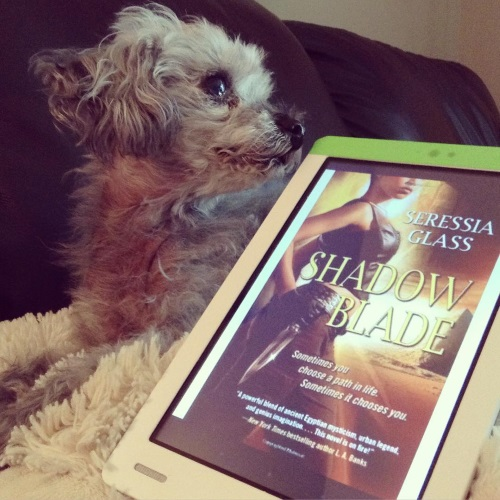 Murchie lies on his fuzzy pillow. His head is twisted to look at something off to the right, effectively putting him in profile. Beside him is a white Kobo with Shadow Blade's gold-toned cover on its screen. The cover features a leather-clad black woman with a silver dagger on her hip. The top of the cover cuts off her eyes. Behind her is a large pyramid.