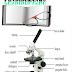 Pengertian Mikroskop Dan Fungsinya Lengkap