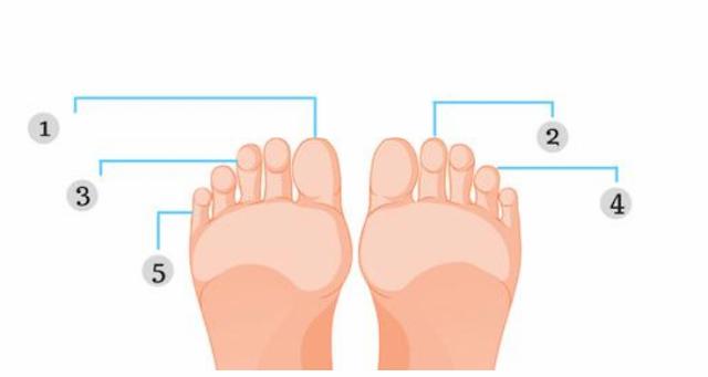 Длина ваших пальцев ног может подсказать будущее и предполагаемое Богатство
