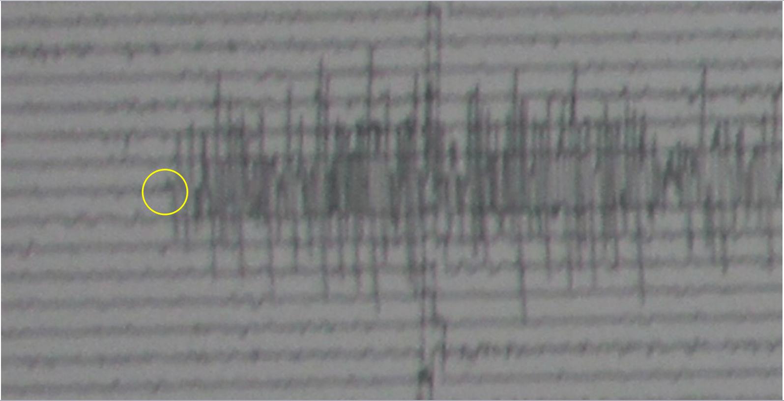 Earthquake Seismograph Analog as Earthquake Instrumentation