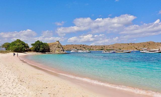 Pink Beach Indonesia