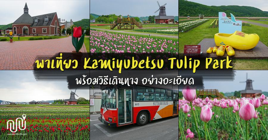 พาเที่ยวสวนทิวลิป Kamiyubetsu Tulip Park พร้อมวิธีเดินทางอย่างละเอียด