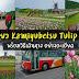 รีวิวพาเที่ยวสวนทิวลิป Kamiyubetsu Tulip Park พร้อมวิธีเดินทางอย่างละเอียด