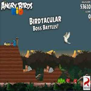 download angry bird rio pc game full version free