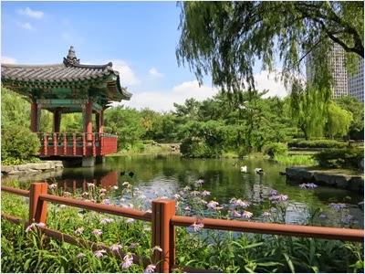 สวนสาธารณะในเกาะยออิโด (Yeouido Island)