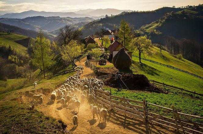 canh dep Romania 16