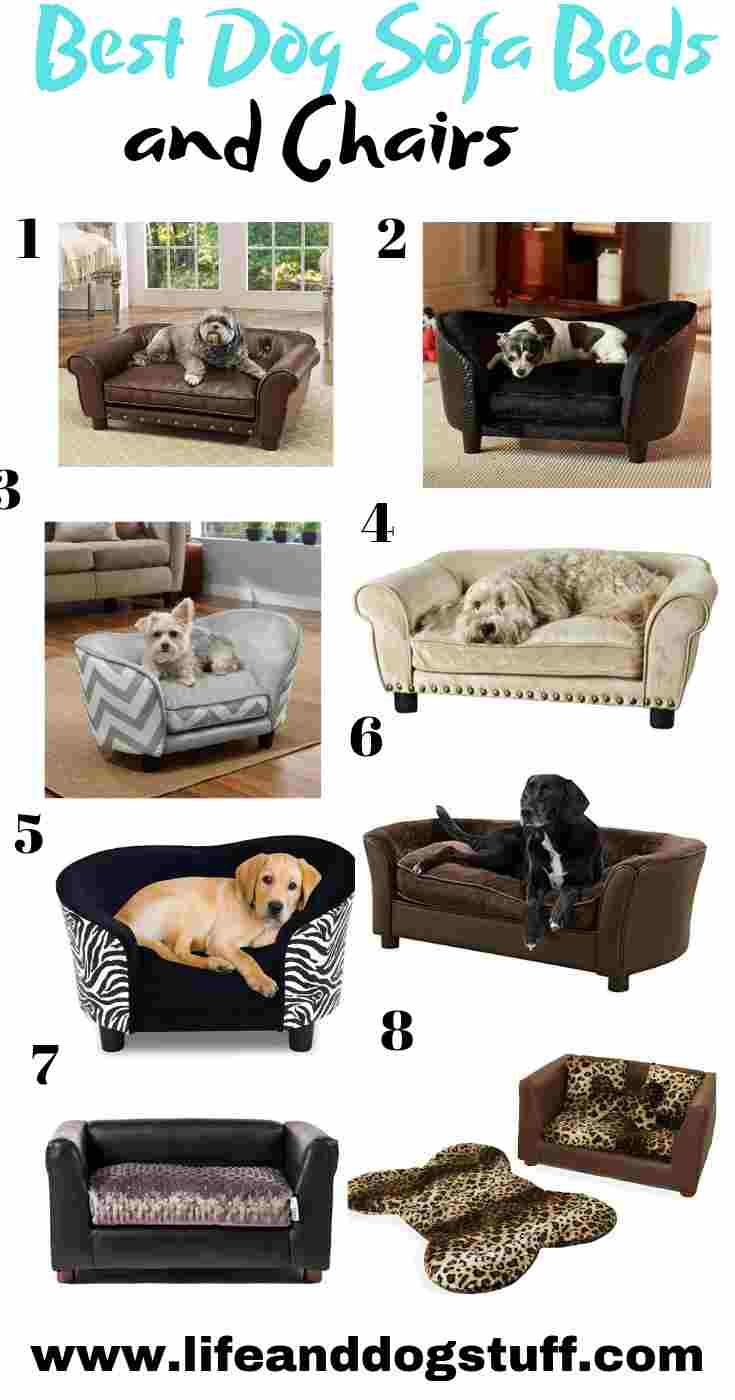 8 Best Dog Sofa Beds and Chairs