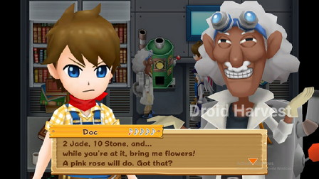 Harvest Moon: Light of Hope Fifth Stone Tablet