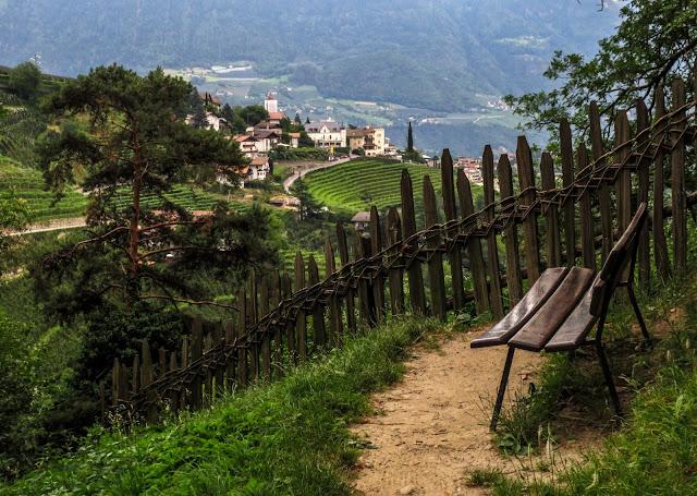 Falkner Weg Panoramic Trail