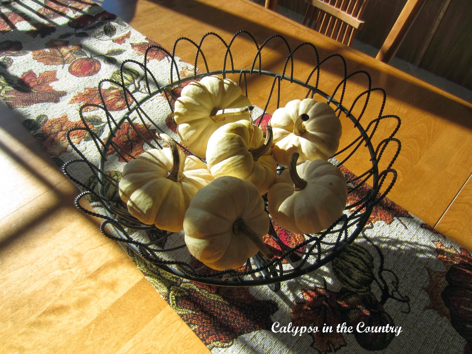 Basket of white pumpkins