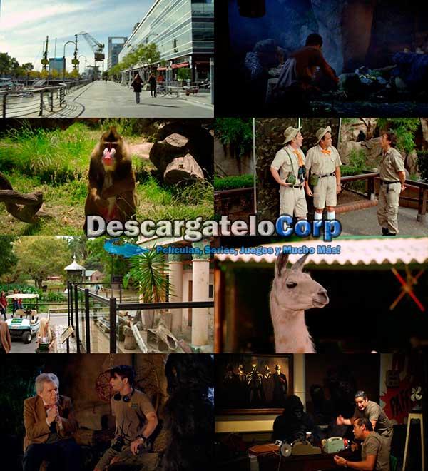 Locos Sueltos en el Zoo DVDRip Latino