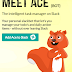 ACE, The Bot - Making Task Management Easy & Effective for Teams