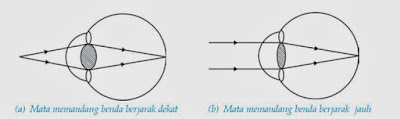 Definisi dan Macam-macam Alat Optik