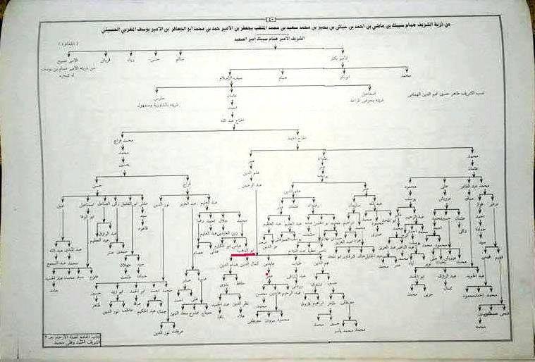 تحميل كتاب القبائل العربية فى مصر لاحمد لطفى السيد