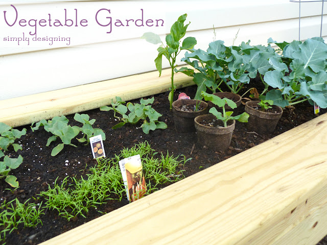 Vegetable Garden ~ #garden #plant #website #HGTVGardens #spon