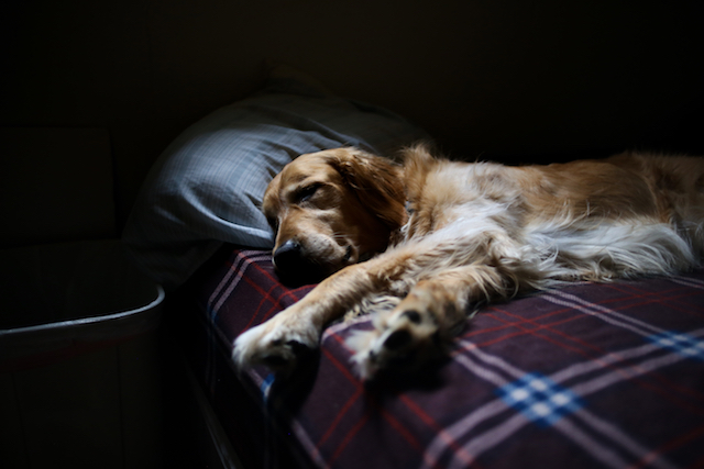 5 trucos para hacer un hogar más hygge, siesta