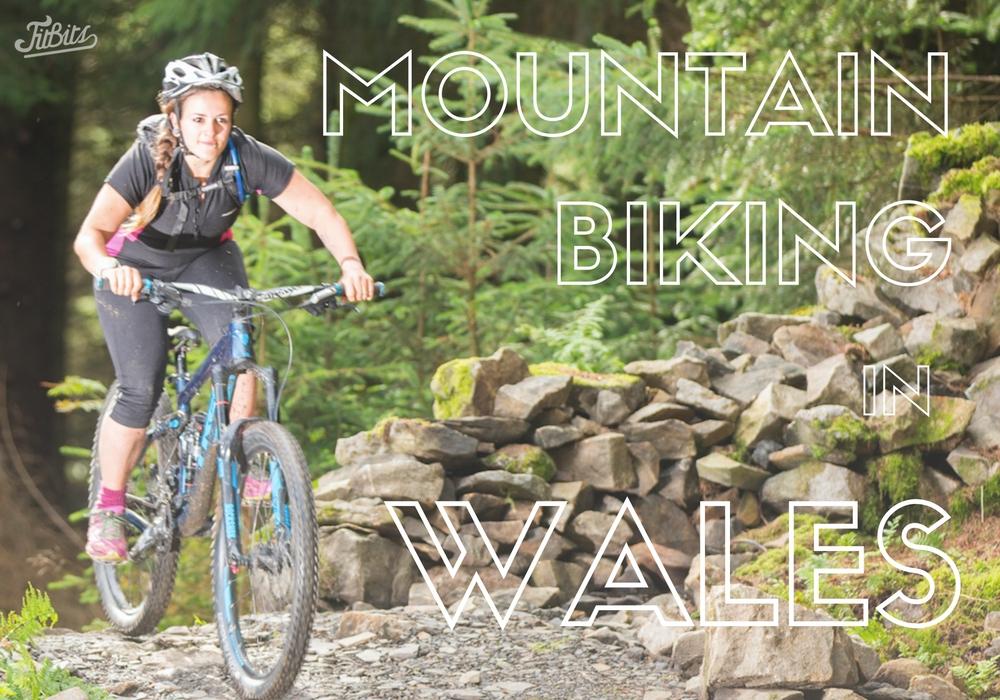 FitBits | Mountain biking in Wales | Bike Park Wales - Afan Forest Park - Forest of Dean - Llandegla - Coed Y Brenin