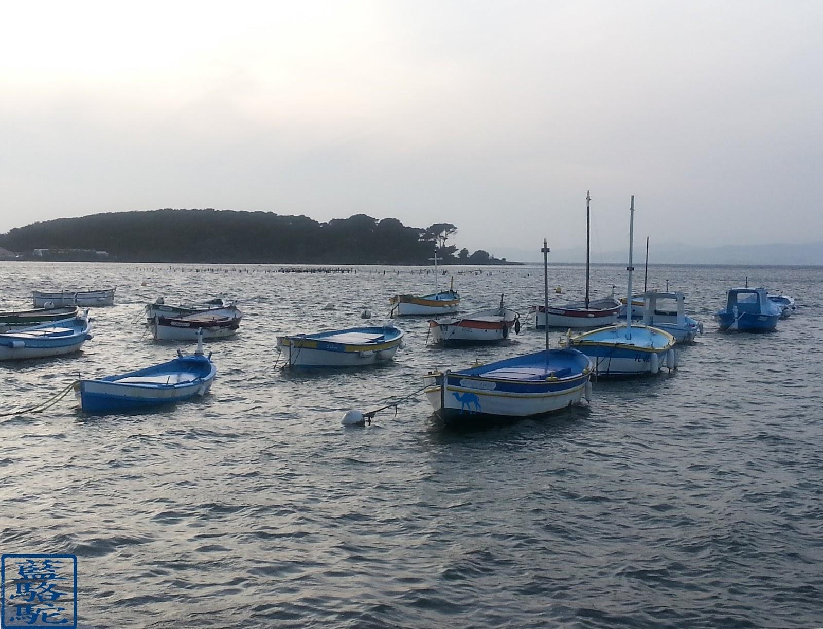 Le Chameau Bleu - Port du Brusc