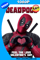 Deadpool (2016) Latino HD 1080P - 2016