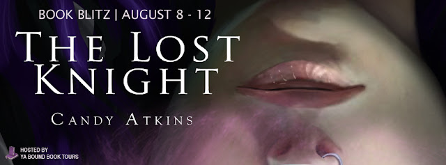 http://yaboundbooktours.blogspot.co.uk/2016/07/book-blitz-sign-up-lost-knight-by-candy.html