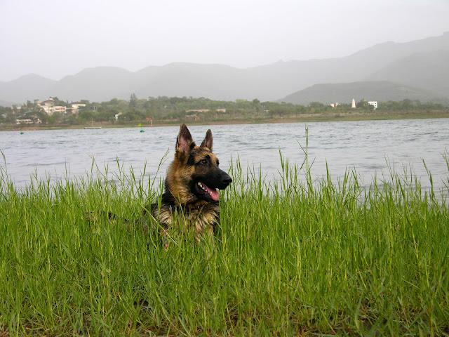 Khadakwasla lake Pune Maharashtra india