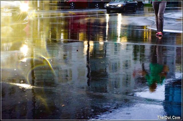 mưa tháng 7 và em