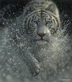 pinturas-animales-salvajes